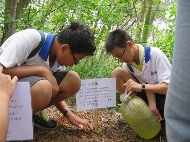 用「不一樣」的種樹,做社會教育