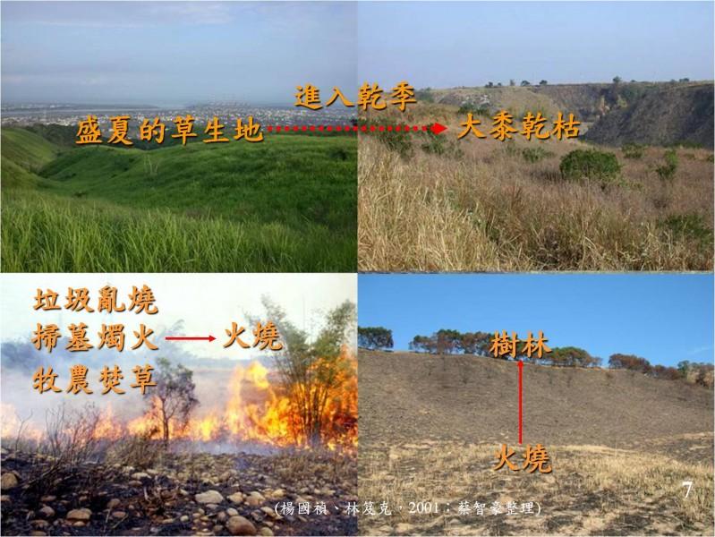 大肚山乾季防火與森林保育