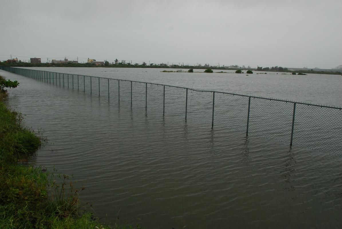 八八水災後的鳥松溼地與永安鹽田