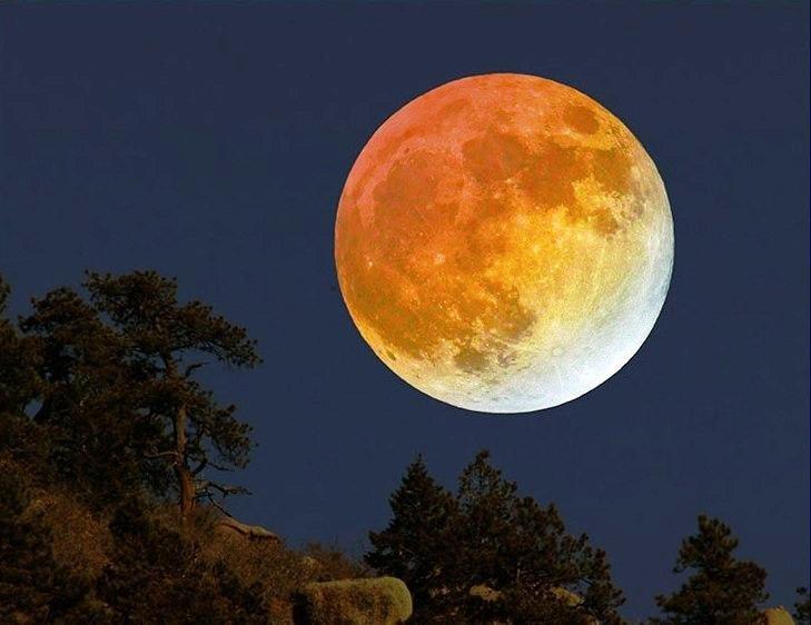 離貪嫉者,能淨心中貪欲雲翳,猶如夜月,眾星圍繞。 —《理趣六波羅蜜多經》
