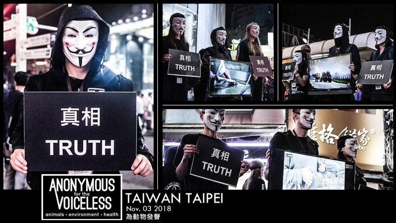 【台灣動物之聲】第367期:反對發展賽馬