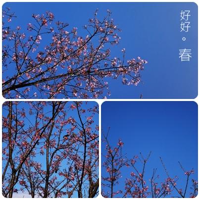 【報主說說】春分秋分,晝夜平分
