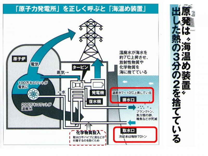 【黑潮綠沙龍】核電與海洋汙染@文/郭金泉